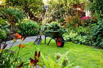 Уход за садом и благоустройство участка